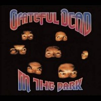 "GRATEFUL DEAD - IN THE DARK ""BRA"""
