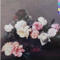 "NEW ORDER -  POWER, CORRUPTION & LIES ""BRA"""