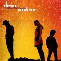 DREAM ACADEMY - A DIFFERENT KIND OF WEATHER ''BRA''